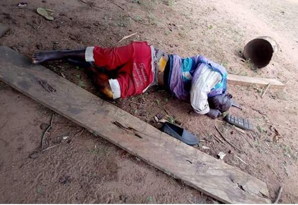 Farmers & Fulani Herdsmen Clash In Kogi, Many Killed (Viewers' Discretion Advised!!)  IMG_20180316_115915_622