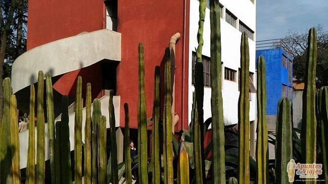 vivir-en-la-ciudad-de-Mexico-93