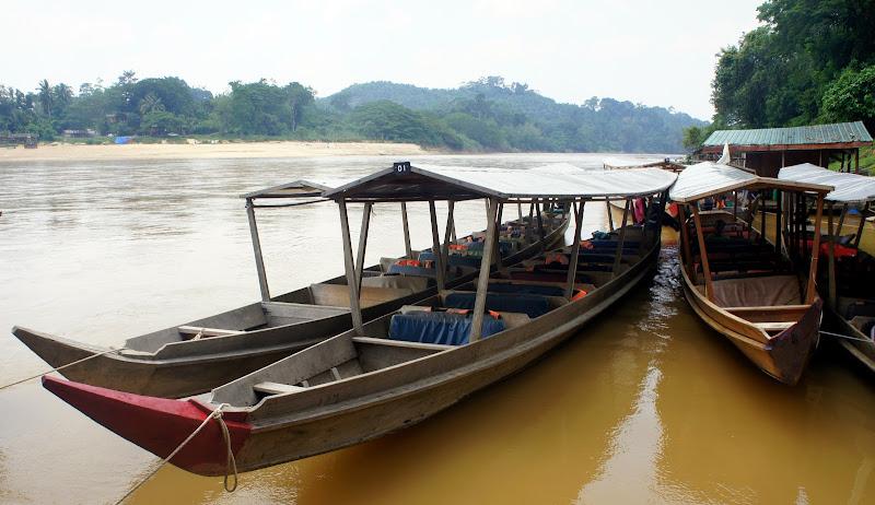 Boote bringen uns in den Dschungel