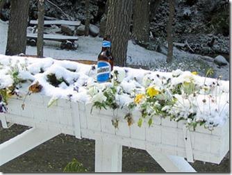 Ushuaia-quilmes-gelando-na-neve