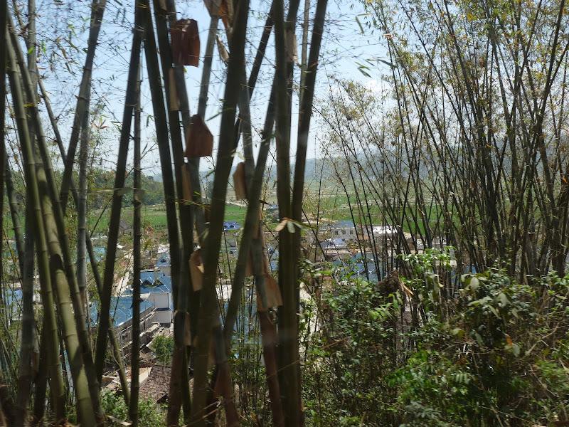 Chine: randonnée xishangbanna, région de Bada - Picture%2B763.jpg