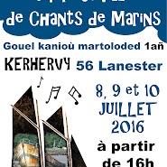 Festival Kerhervy 07.2016 (0).jpg