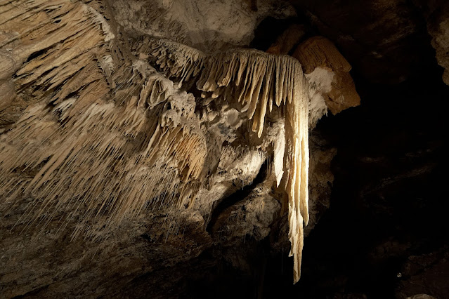 A large stalactite formation spills down like a waterfall in the Marakoopa Cave