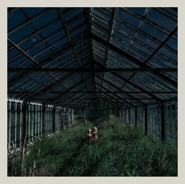 foxing_cover