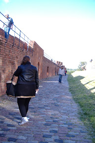 Patrolling the wall...