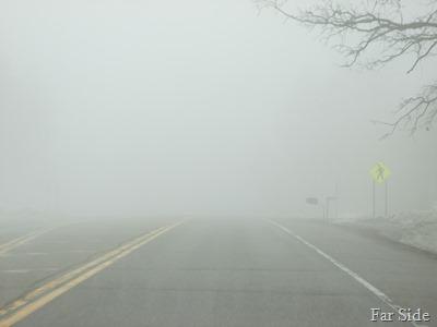 Fog in Osage