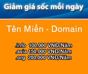 Tên miền giá cực hot .info chỉ 100.000 vnđ/năm