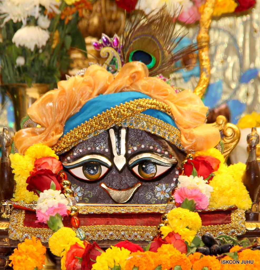 ISKCON Juhu Sringar Deity Darshan on 30th Dec 2016 (9)