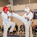KarateGoes_0099.jpg