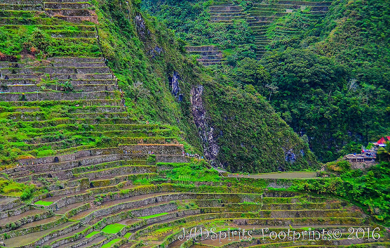 The trekkers in Batad Rice Terraces going to the falls or to the highest viewpoint