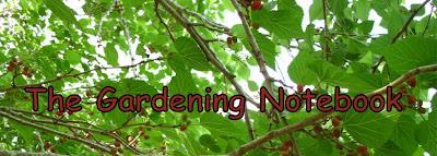 The Gardening Notebook by Angi Schneider