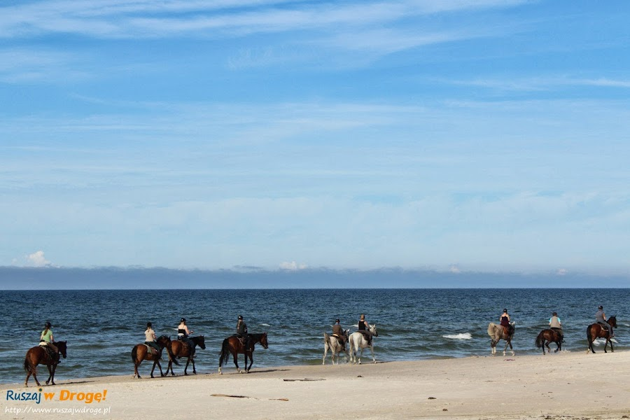 Konna karawana na plaży w Czołpinie