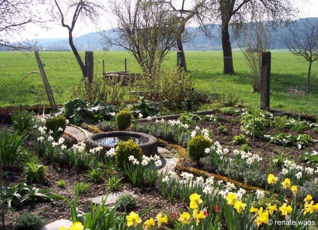 Gartenblog geniesser garten bauerngartenblumen - Geniesser garten ...