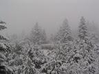 Χιονισμένο τοπίο στα Πράμαντα