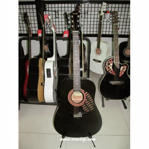 Đàn Guitar Acoustic - Hohner HW220TBK