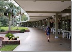 Springside Mall