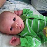 Meet Marshall! - 115_2565.JPG