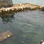 El acuario de pesca