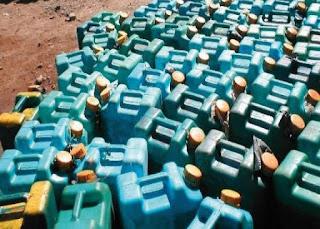 TÉBESSA: 1400 litres de carburants et 350 chardonnerets saisis par la douane