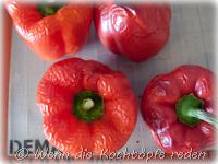 paprika-gefuellt-mit-thunfisch-tomaten-krauetern-8