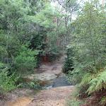 Crossing the Bare Creek (120556)