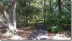 Boardwalk at nature trail-1