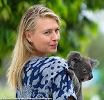 Maria Sharapova - Brisbane Tennis International 2015 -DSC_5964.jpg
