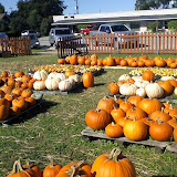 Pumpkin Patch 2014 - 1004101822.jpg