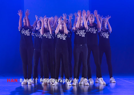 Han Balk Voorster Dansdag 2016-4577-2.jpg