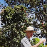 06-20-13 Hawaii Volcanoes National Park - IMGP7835.JPG