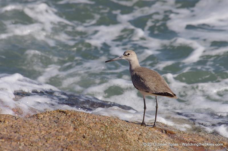 Surfside Beach Spring Break - IMGP6101.JPG
