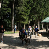 Ausflugsfahrt in den Bayerischen Wald: 19. Juli 2015 - IMG_1753.JPG