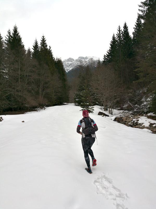 Alergam cu spor pe forestierul de pe valea Gaura.