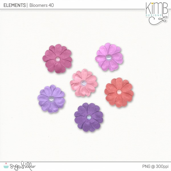 kb-Bloomers40_6