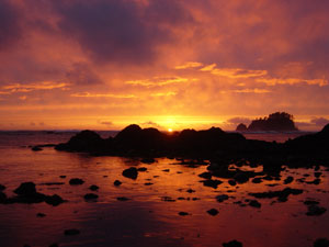 I couldn't believe that I actually took this photo, it was so beautiful. Photo taken on April 27, 2007 at Cape Alava, WA.