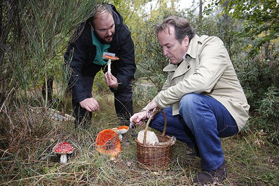 Más de 350 actividades medioambientales gratuitas programadas para el otoño 2015