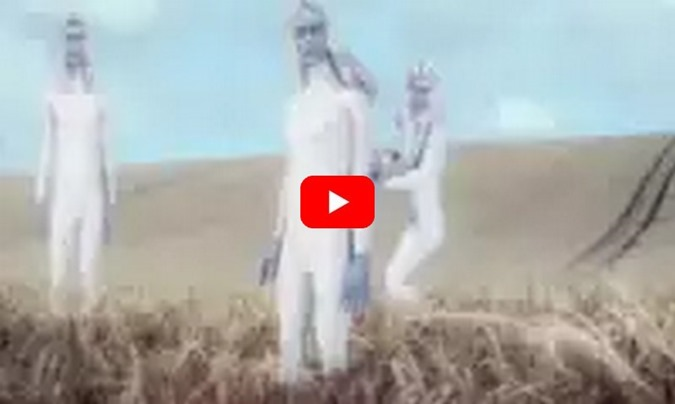 Reino Unido, Wiltshire, Polícia vê grandes brancos no meio do campo com formação de círculo de colheita