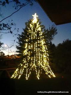 Kelli's Tree 13