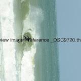 _DSC9720.thumb.jpg