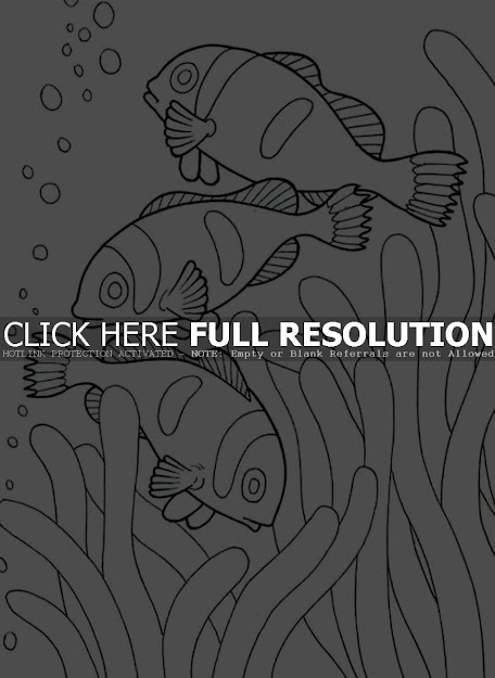 Baby Sea Animals Coloring Pages Cute