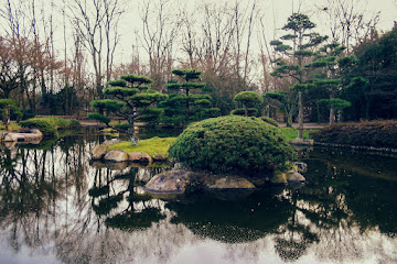 Reflections in Japanese Garden