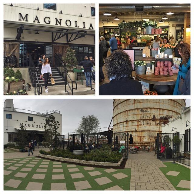 [magnolia3]