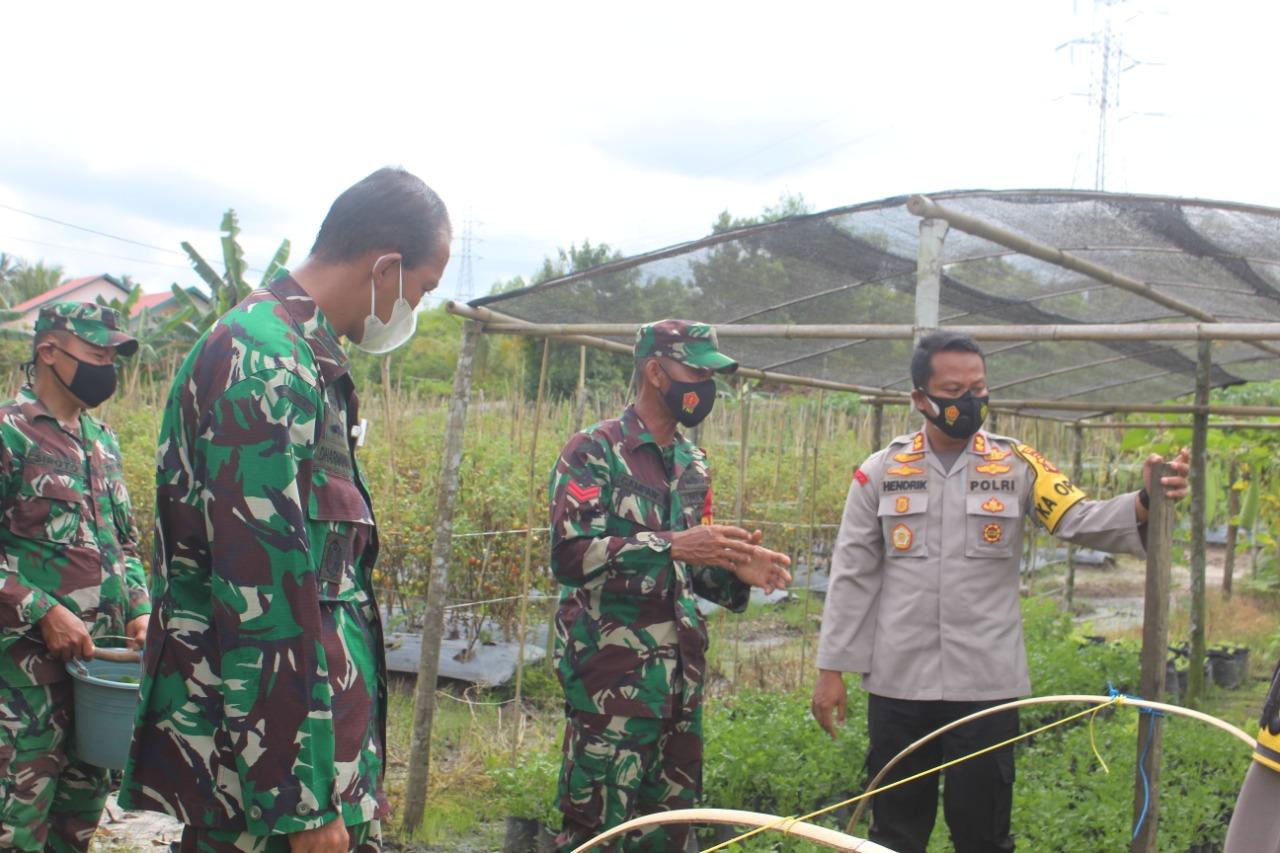 Babinsa Teladan Koptu Gampang Buka Rahasia Ilmu Pertanian ke Dandim 0913/PPU dan Kapolres PPU