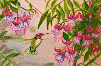 green hummingbird fuchsia garden
