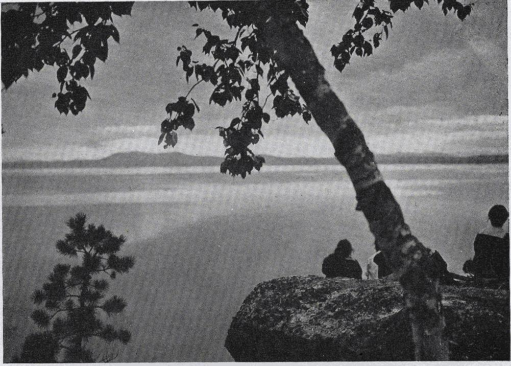 1918-1919 Wohelo Brochure