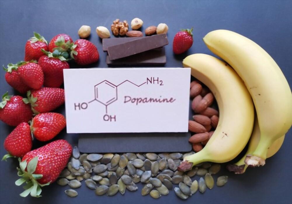 Como a dopamina afeta os desejos?