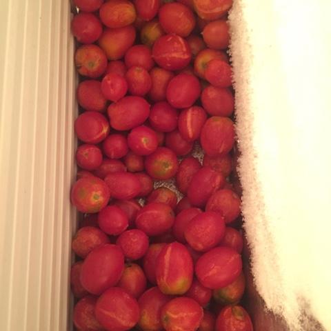 Pomodori congelati come usarli per cucinare for Cucinare e congelare