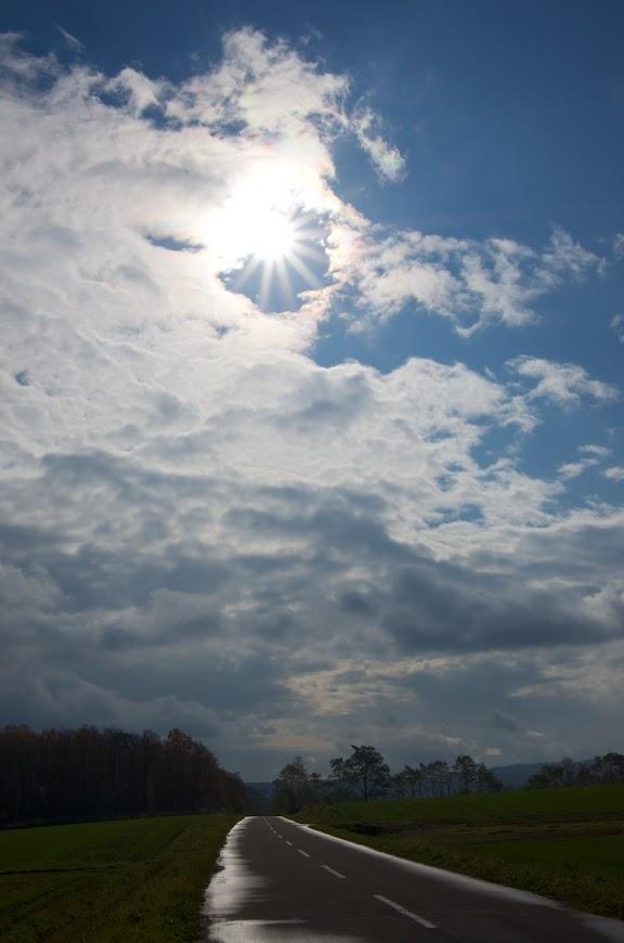 ひまわりの里に注ぐ初冬の太陽