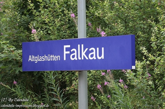 Altglashütten-Falkau