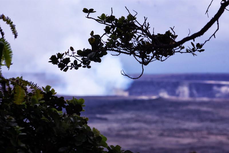 06-20-13 Hawaii Volcanoes National Park - IMGP5229.JPG